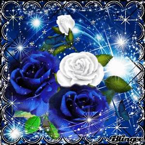 Blue & White Roses Picture #129580357 | Blingee.com