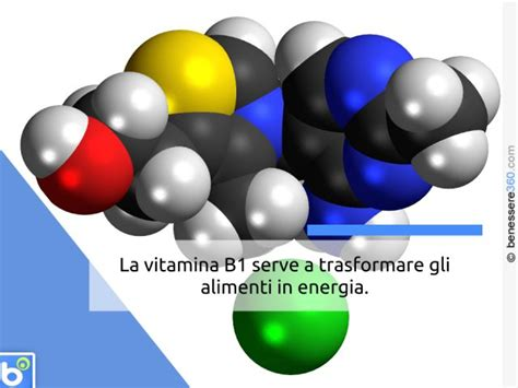 vitamina  negli alimenti dove  trova ed  cosa serve