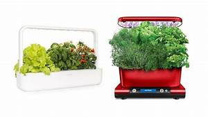 Click And Grow Indoor Smart Herb Garden Review  3 Products