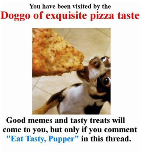 Pupper Memes - you have been visited by the doggo of exquisite pizza taste good memes and tasty treats will
