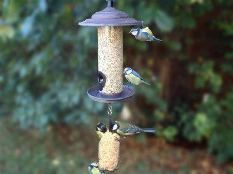 mangeoire a oiseau mangeoire oiseau fait maison ventana