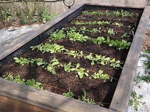 bio garten bewasserung fur hochbeete bewasserung fur With französischer balkon mit garten bewässerungssystem gardena