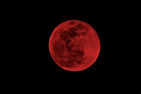 Blood Moon Meme - blood moon 2014 memes relive lunar eclipse with these hilarious pictures photos