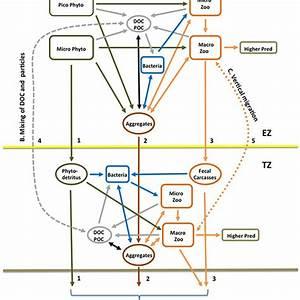 Ez Bed Wiring Diagram