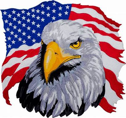 Eagle Flag American Clipart Transparent Bald Pinclipart