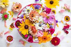 Flower Power Blumen : rezept kuchen mit essbaren blumen woman at ~ Yasmunasinghe.com Haus und Dekorationen