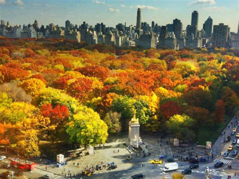 fall nyc york things autumn gorgeous courtesy photograph creative commons flickr schulz joe