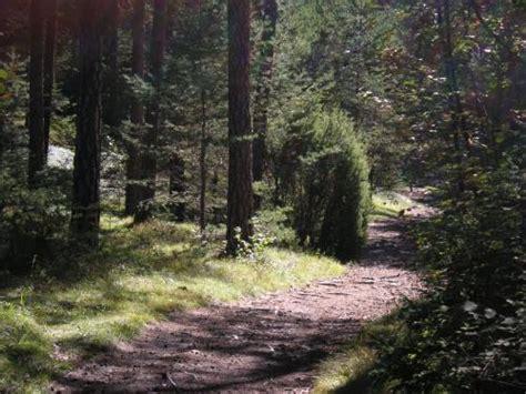 naturpark pfyn finges wallis  salgesch familienlebench