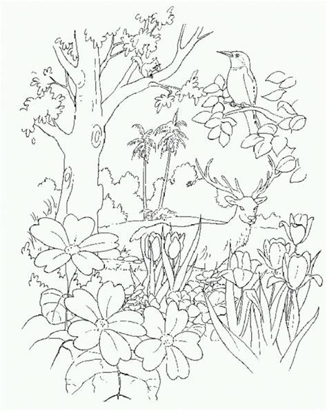 garden  eden coloring page coloring home
