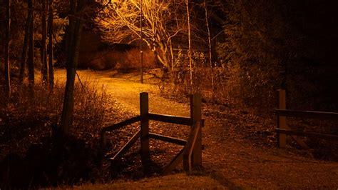 photo night scene  image  pixabay