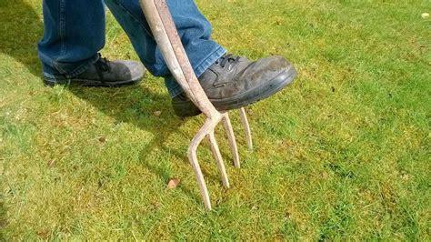 Wie Oft Rasen Lüften by Rasen L 252 Ften Wann Ist Die Beste Zeit Und Welches Werkzeug