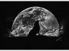 wolf moon Other & Abstract Background Wallpapers on