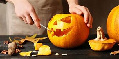 Pumpkin Carving Halloween Fall Asmr Provide