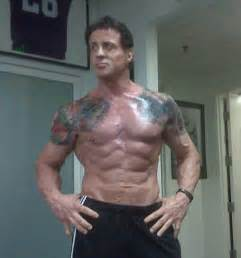 What Does Navy Seals Stand For by Sylvester Stallone Body Now Wesharepics