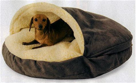 Burrowing Bed by The And Of It All A Dachshund News