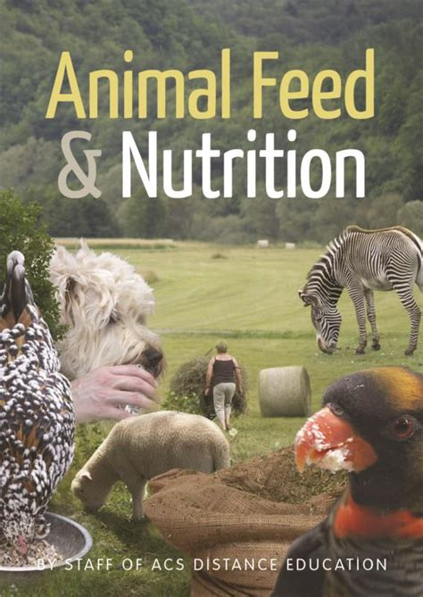 animal feed nutrition