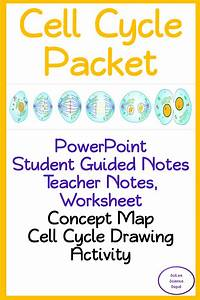 Cell Cycle  Powerpoint  Guided Notes  Teacher Notes