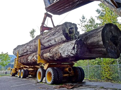 forestry equipment financing first capital business financing usa