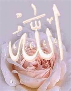 Fleur D Islam Horaire Priere : priere ~ Medecine-chirurgie-esthetiques.com Avis de Voitures