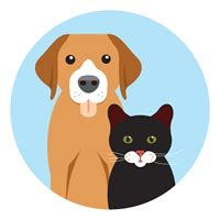 pet insurance pet insurance cover for dogs and cats lv