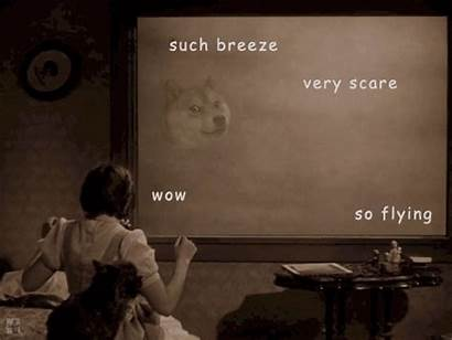 Wizard Oz Doge Meme Memes Funny Gifs