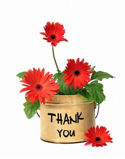 Thank Merci Fleurs Zezete2 Flowers Thanks Publie