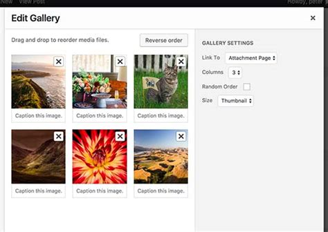 Creating Your Own Image Gallery Page Template In by Photo Gallery Tutorial Cartoonwjd