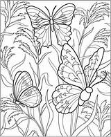 Coloring Pages Gardening Colouring Vegetable Garden Flower Sheets Gardens Adults Flowers Butterfly Insect Printable Adult Vegetables Hard Read sketch template