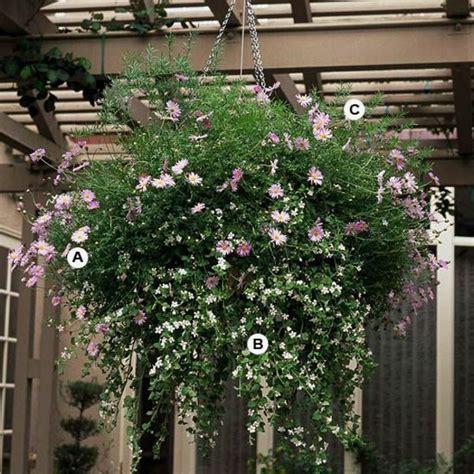 Hängende Blumen Für Balkonkästen by Gartengestaltung Atemberaubende H 228 Ngende Blumbenk 246 Rbe