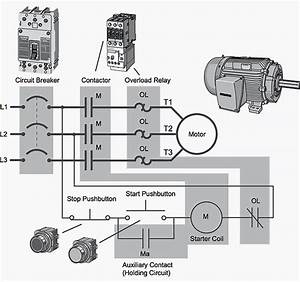 Pole Motor Starter Wiring Diagram