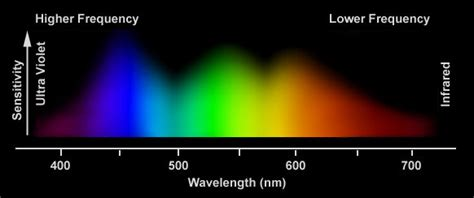 eye sensitivity to light which shades hues of color are easiest to