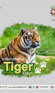 Don't let the Tigers disappear International Tiger Day ...