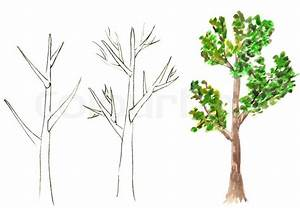 Method drawing of tree on a white background | Stock Photo ...