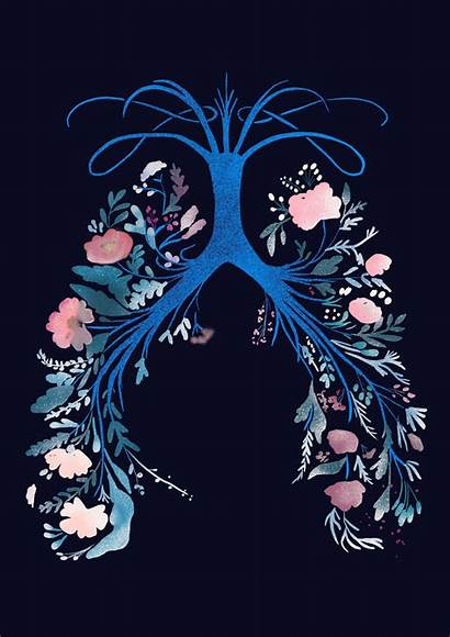 Apart Feet Five Anatomy Lungs Drawing Lung
