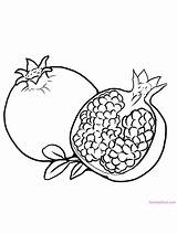 Coloring Pages Fruit Pomegranate Gaddynippercrayons Printable sketch template