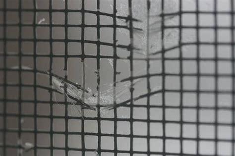 measure  andersen window replacement screens homesteady