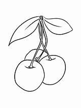 Cherry Coloring Fruit Printable Cherries Disimpan Dari sketch template