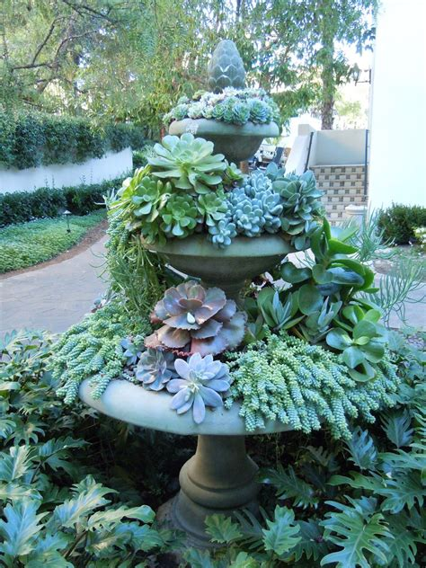 succulents outdoors use an old fountain as a succulent garden outdoors pinterest succulents garden fountain