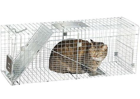 stray cat trap humane trap rescue kit for catching feral cats