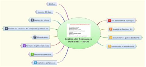 gestion des ressources humaines roche xmind mind map