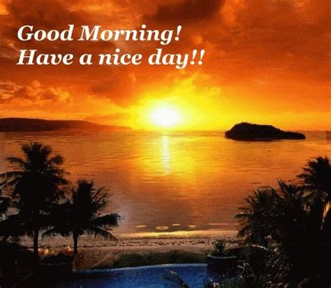 good morning   nice day pictures   images  facebook tumblr pinterest