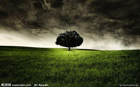 新西兰风景摄影图__自然风景_自然景观_摄影图库_昵图网nipic.com
