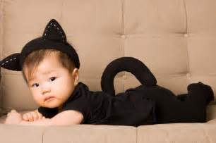 baby cat costume easy costumes for babies page 2