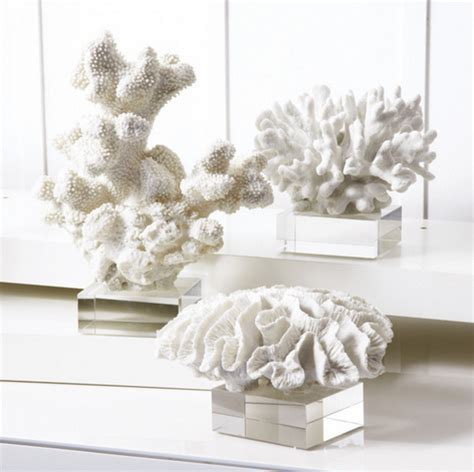 White Coral Decor - white coral bring the sea and a snowy feel to