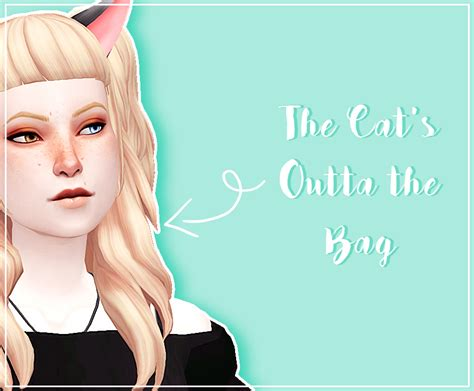 Cat Ears Cat Tail