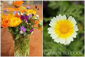 Edible flowers, how to grow them and how to eat them ...