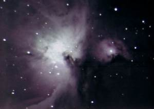 Orion Nebula Through 8 Inch Telescope - Pics about space