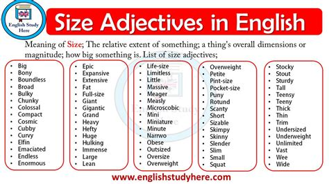 size adjectives  english english study