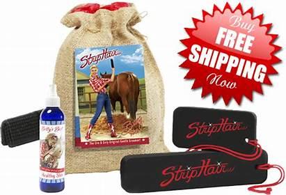 Hair Strip Grooming Gentle Kit Sunset Horse