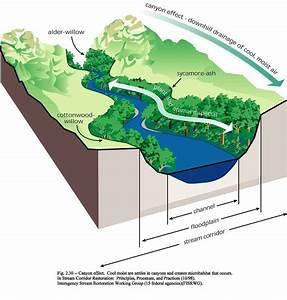 Stream Corridor Diagram